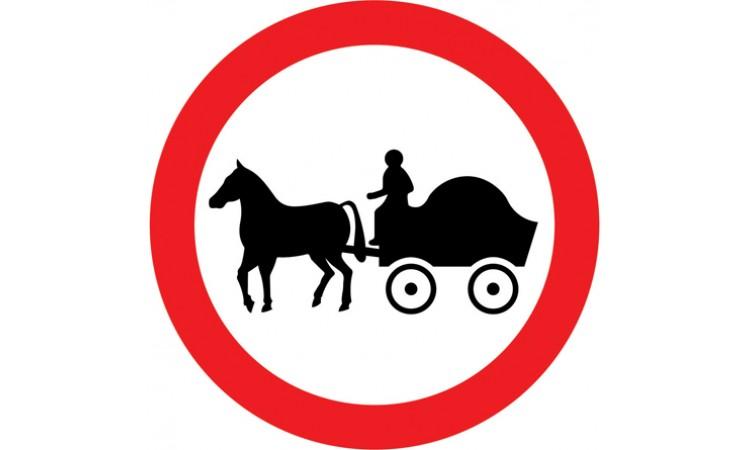 Horse drawn vehicles prohibited