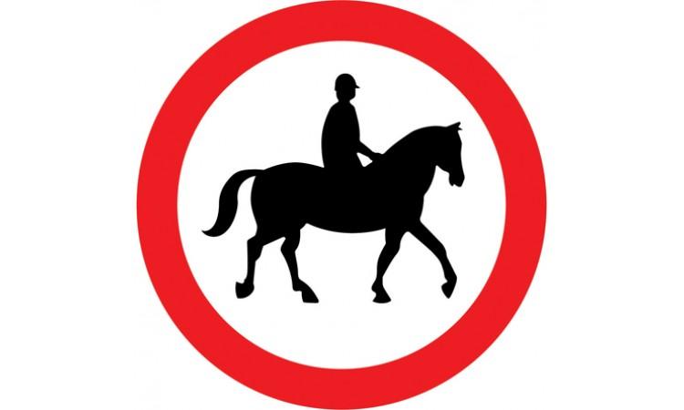 Ridden or accompanied horses prohibited